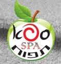 תמונה עבור יצרן ספא תפוח